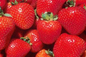 Fresh strawberries - Close up free image.